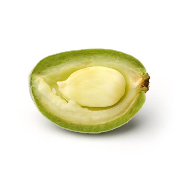 halbierte-gruen-gelbe-mandelfrucht-mit-kern-highdroxy-wirkstoff-mandelaeure
